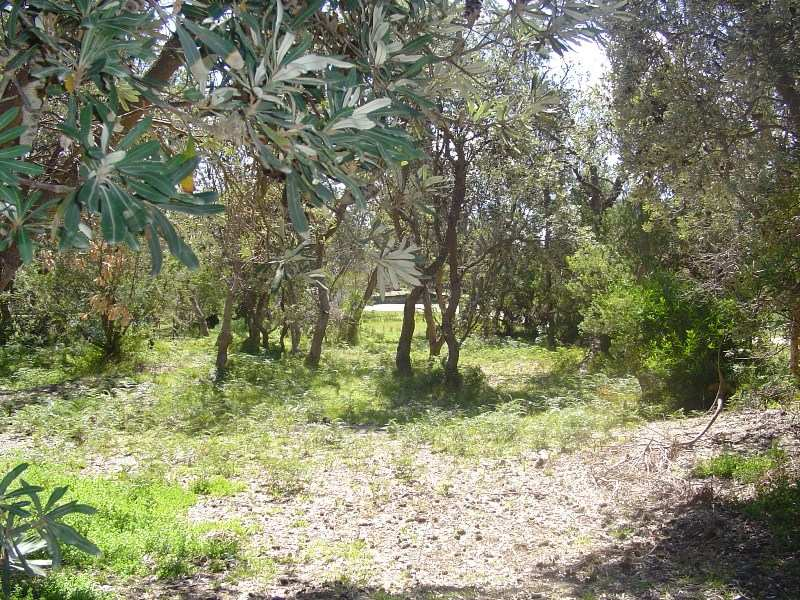 Lot 630, 4 Sea Breeze Ave, Golden Beach, VIC, 3851